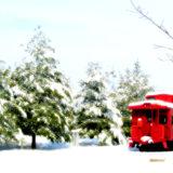 Top Winter Frame picks from America's Best
